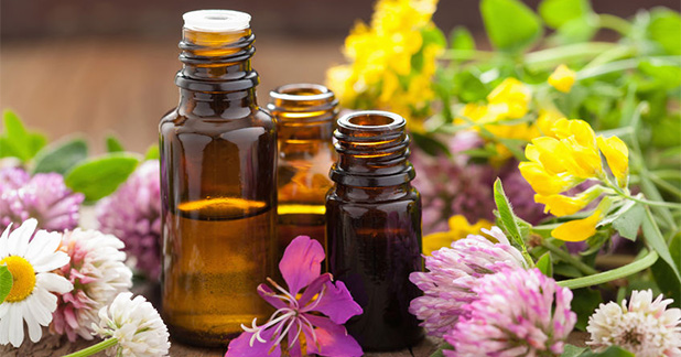 Beginner's Guide to Essential Oils: Where to start when the selection of aromatherapy and spa products seems daunting